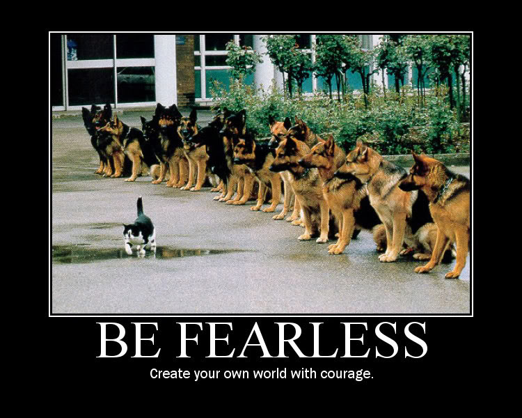 nevershow fear