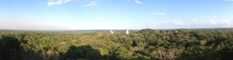 Panorama Tikal