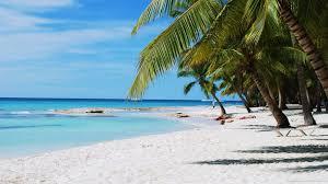 Dominican harem beach
