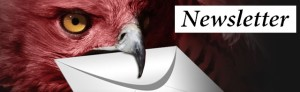 swoop the world newsletter