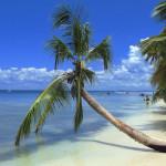 A Pair Of Dominican Cupid Golddiggers – Guest Post by El Conquistador