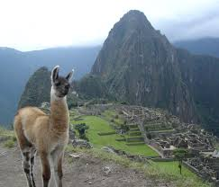 swooop peru peruvian women